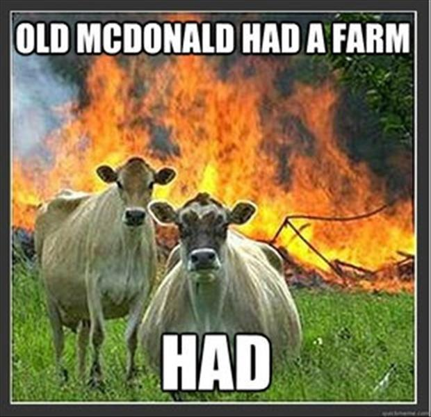 old macdonald had a fun